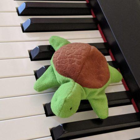 small stuffed animal on keyboard